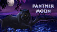 panther_moon